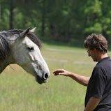Uwe Weinzierl bei der Calm Horse Academy