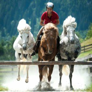 Sandra Fencl bei der Calm Horse Academy