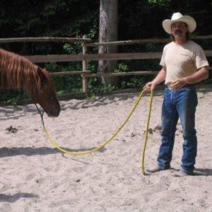 Andreas Gruber bei der Calm Horse Academy