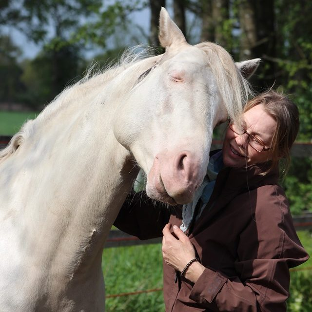 Silke Grans bei der Calm Horse Academy