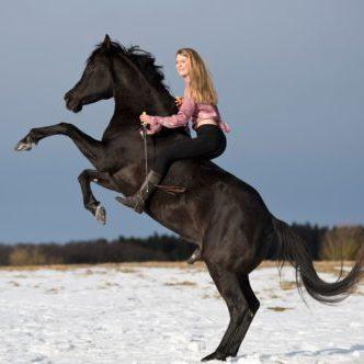 Alessa Neuner bei der Calm Horse Academy