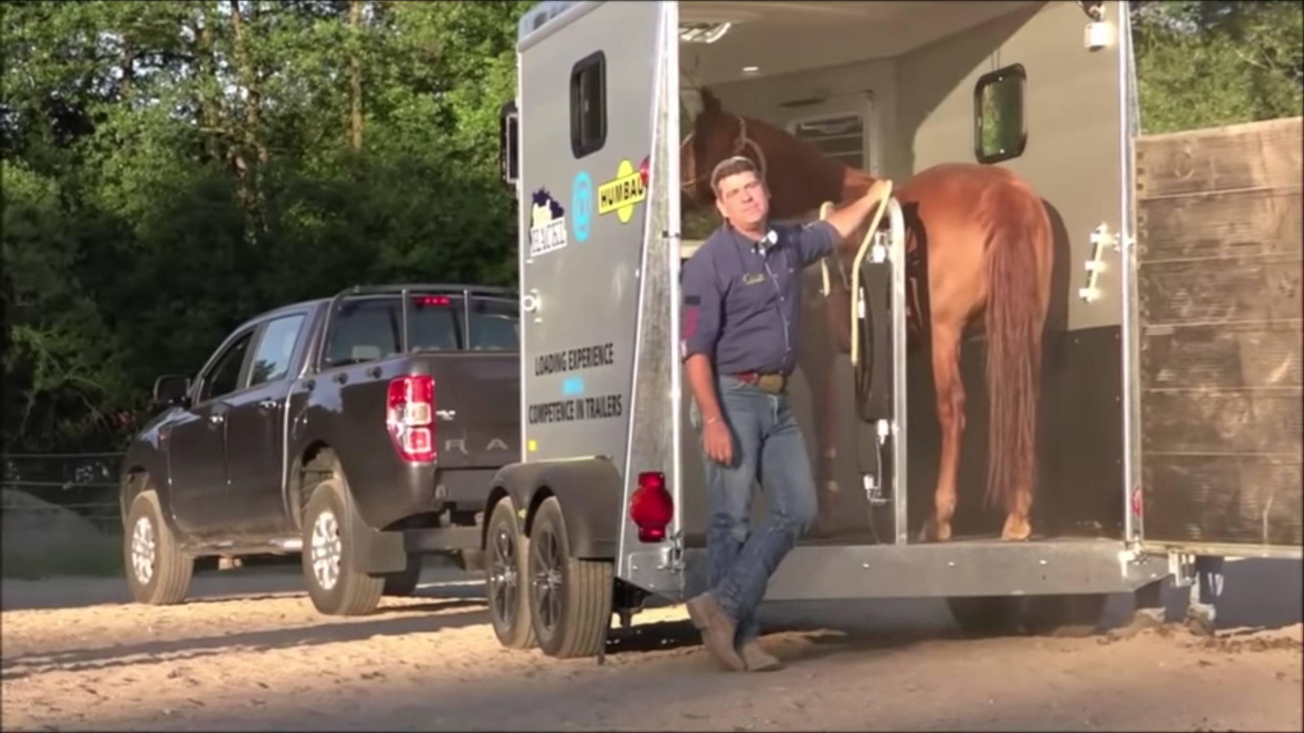Pferde einfach verladen